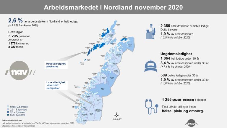 2. Infografikk 2020-11 Arbeidsmarkedet i Nordland (png).png